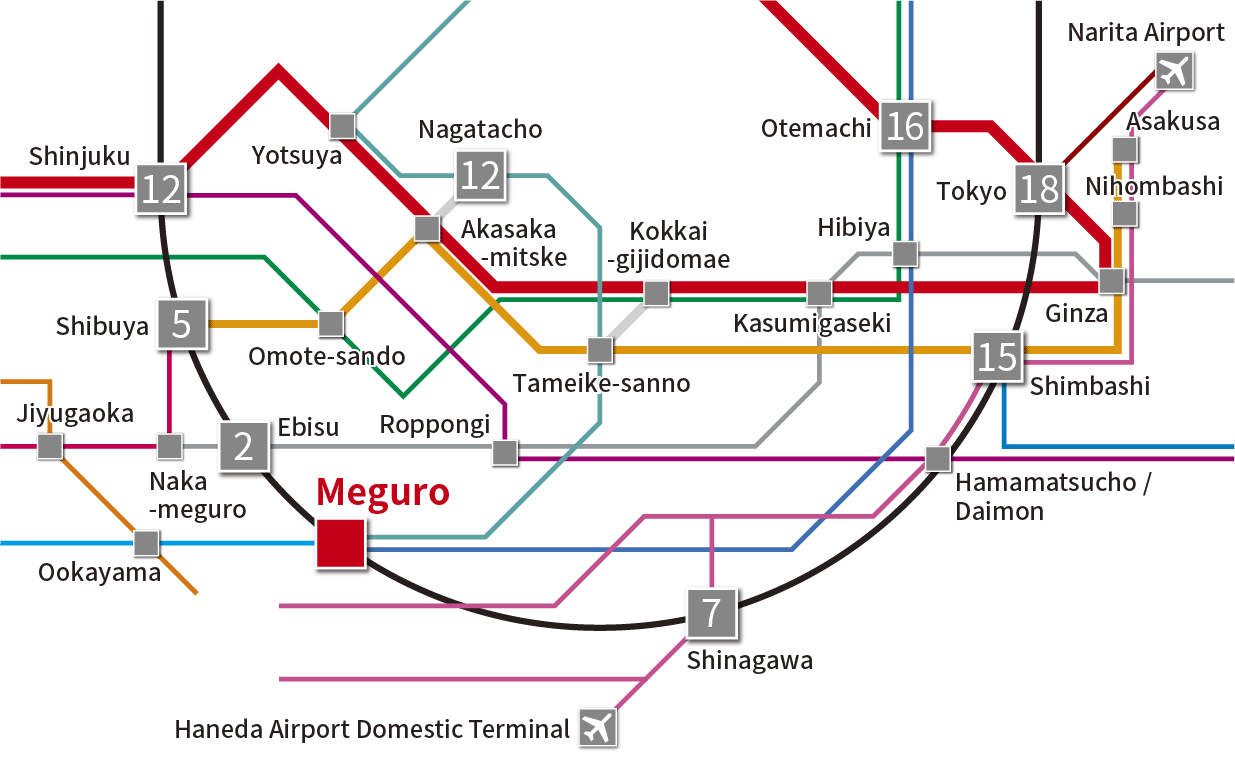 Tokyo main area route map
